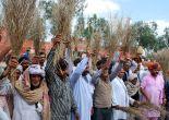 BKU slams Radha Mohan Singh for his reasons of farmers suicide