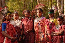 बस्तर: आदिवासियों के घरों से सुरक्षा बलों को दूर रखने की सिफारिश