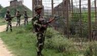 Two militants arrested in Jammu-Kashmir