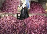 Onion scam reports misleading, says AAP