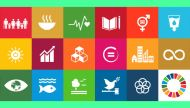 No butterfly effect: will the UN's 17 new goals take us anywhere?