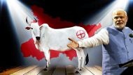 Modi did not defuse #Dadri. He made beef more central to the Bihar debate