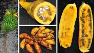 Feast on the sweetest banana, courtesy the Little Andaman