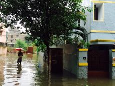 Why Andhra is benefitting from heavy rains even as Tamil Nadu suffers