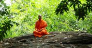 How a Tibetan organisation is bringing together spirituality and environment