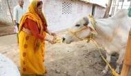 Rabri Devi has benami plot worth Rs 30.90 lakh, alleges Sushil Modi
