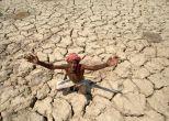 'Jai Kisan'! The economics behind Chhattisgarh farmer suicides
