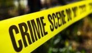 Danish police discover severed head of Swedish journalist
