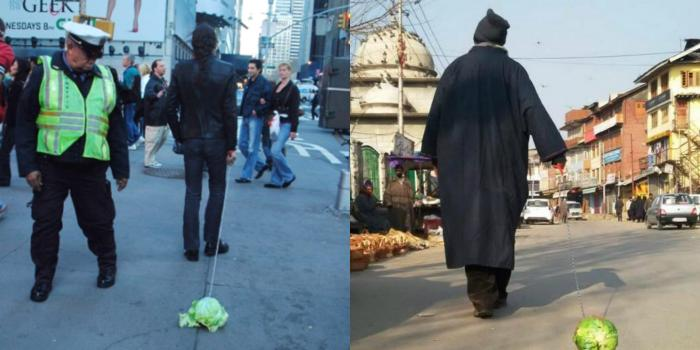 From Beijing to Kashmir: here's the curious case of a Kashmiri cabbage walker
