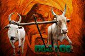 अरुण जेटली के इस बज़ट से भारतीय किसानों को क्या चाहिए