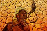 हरित क्रांति नहीं किसानों की आत्महत्या है पंजाब में चुनावी मुद्दा