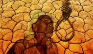 Maharashtra: Farmer makes suicide bid at event attended by ministers