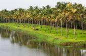 पर्यावरण नियमों की अनदेखी कर नई योजनाओं को हरी झंडी दे रही गोवा सरकार