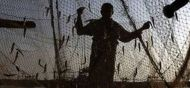 श्रीलंकाई नौसेना ने 28 भारतीय मछुआरे को गिरफ्तार किया