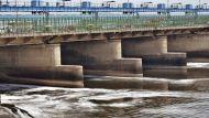 नदी जल बंटवारे और सतलज-यमुना लिंक कैनाल ने खोली सभी दलों की पोल