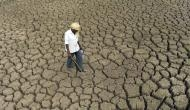 Water scarcity in Kashmir Valley, Govt advises farmers not to grow paddy