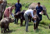 काजीरंगा: ब्रिटेन के शाही जोड़े की यात्रा के बाद गैंडे का हुआ शिकार