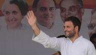 राहुल गांधी की ताजपोशी पर बोले कांग्रेस नेता, ये 'इलेक्शन' नहीं 'सेलेक्शन' है
