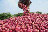 मध्य प्रदेश के नीमच में 30 पैसे किलो प्याज