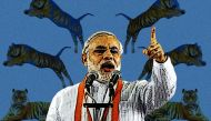 Out of the woods: has Modi finally changed tack on tiger conservation?