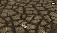 Maharashtra: Drought-hit Latur residents postpone surgeries to buy water