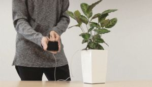 This incredible new tech turns plants into powerplants