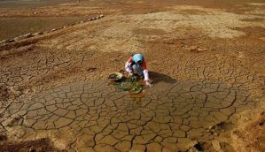 Tamil Nadu: Minister, officials assess drought, crop loss situation in Nagapattinam district