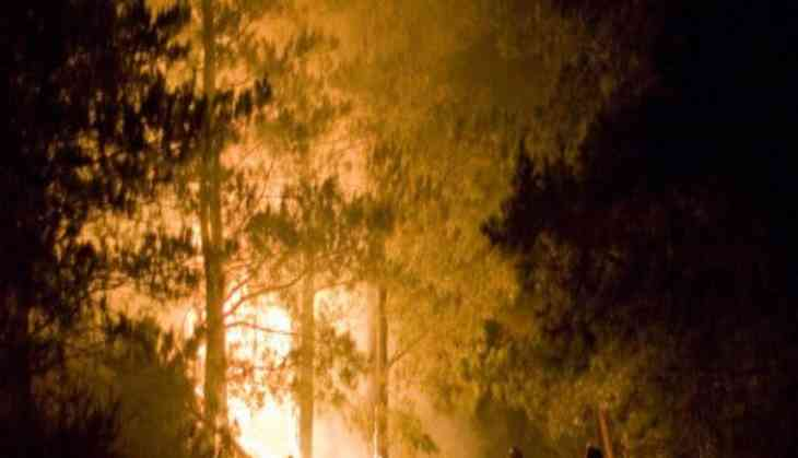 Under pressure over forest fires, Uttarakhand gives in to blackmail by striking forest guards