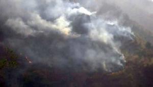 इस तरह से जल्द रुक जाएगी हिमालय के जंगलों में लगने वाली आग