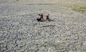 Key takeaways from the Supreme Court order on drought