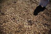 महाराष्ट्र: मराठवाड़ा में सूखे ने 16 महीनों में ली 212 किसानों की जान