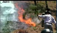 Fresh forest fires break out in Uttarakhand amid heat wave