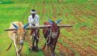 Why we need better ways to cut greenhouse gases from agriculture