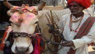 सैकड़ों साल से घुमंतु नंदीवाले बन रहे हैं किसान और करने लगे हैं पढ़ाई