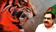 Shiv Sena marks Khadse's downfall with fireworks