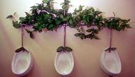 शौचालय डिजाइन प्रतियोगिताः दुनिया के अलग-अलग हिस्सों में बनें सार्वजनिक शौचालय