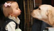 इंसानों की ही तरह कुत्तों को भी होती है टेंशन