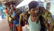 5,000 animals killed in Bengal hunting festival, cooked openly at railway stations