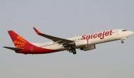 जैव ईंधन से SpiceJet ने उड़ाया विमान, पेट्रोलियम मंत्री धर्मेंद्र प्रधान ने बताया बड़ी उपलब्धि