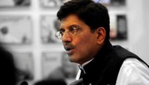 India's solar power capacity to be 22 GW by March: Piyush Goyal