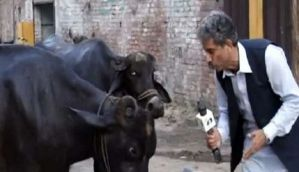 This Pakistani journalist interviews cattle and can even translate what they are saying!