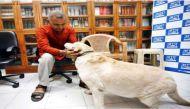 आप नेता सोमनाथ भारती के कुत्ते 'डॉन' की हत्या का प्रयास