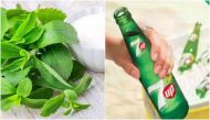 An ace up 7Up's sleeve with natural sweetener Stevia