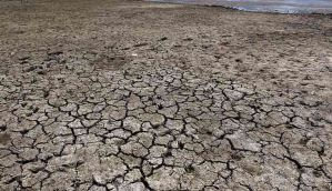 Left high & dry: Marathwada is heading for a drought situation again