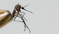मणिपुर: मच्छर जनित बीमारियों से 16 की मौत