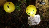 पाकिस्तान से भारत की सीमा में आया गुब्बारा, लिखा है  'हम बदला लेंगे'