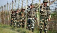 J-K: BSF soldier injured in cross-border shelling by Pakistan