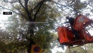 'जहरीली हवा' पर NGT की 4 राज्यों को फटकार, NDMC ने बरसाई पानी की फुहार