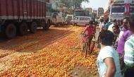 नोटबंदी का नतीजा: 2 किमी लंबी टमाटर की सड़क