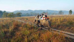 Uttarakhand High Court order on releasing man-eaters baffles officials